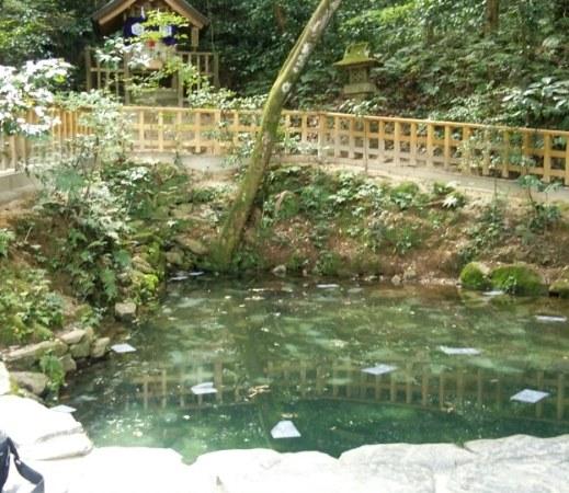 八重垣神社鏡池