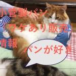 テレビの夕方のニュース番組で紹介された工場直売「激安パン」小菅製パン