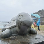 奄美大島で会える【夢をかなえるカメさん】