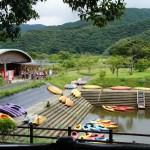奄美大島観光*黒潮の森マングローブパーク*カヌー体験ができるよ
