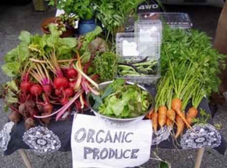 organic-produce-28754