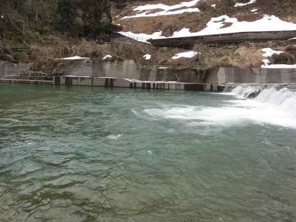 たった15分の初釣行【パックロッド渓流ルアーフィッシングの勧め】