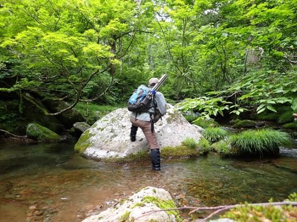 渓流・源流釣り【印象に残った 渓・渓魚・釣行】:『かつて もののけの渓 その後』:2021-1