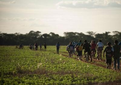 No município de Rio Brilhante (MS), em maio, um grupo guarani-caiová que estava precariamente acampado na beira da BR-163 atravessou a plantação de soja e reocupou a mata que fica a cerca de um quilômetro da rodovia.  (Foto: Filipe Redondo (novembro/2011))