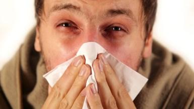 Resultado de imagen de rinitis alérgica
