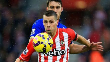Morgan Schneiderlin: Has been a key figure for Southampton