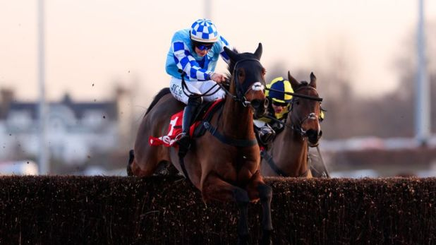 Double Shuffle - faces big test in Charlie Hall Chase