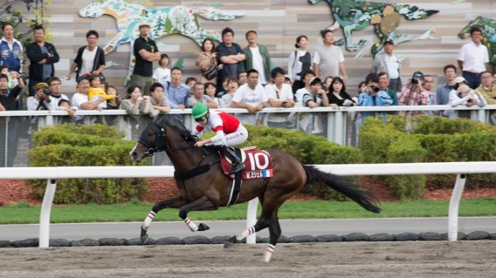 Michel in action at the 2019 World All-Star Jockeys Championship in Sapporo in 2019