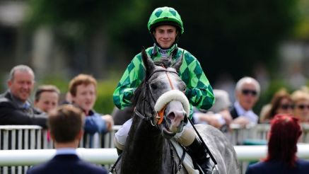 The Grey Gatsby is set to run at Newbury