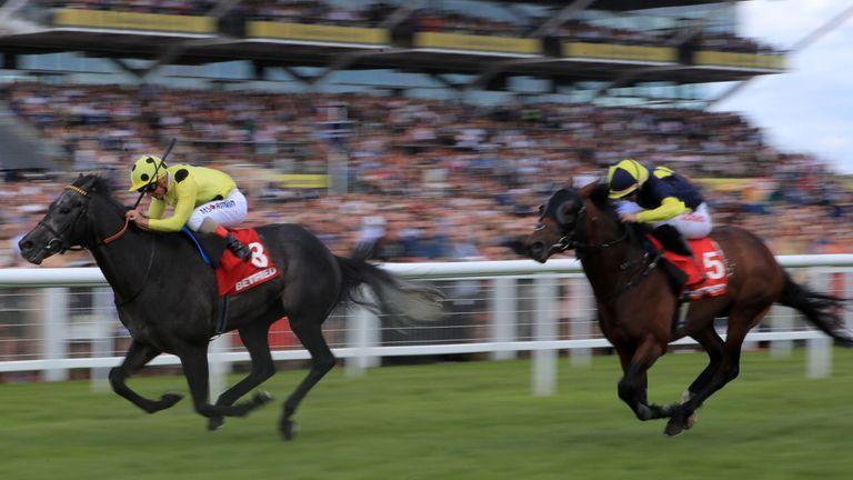 Image result for defoe horse