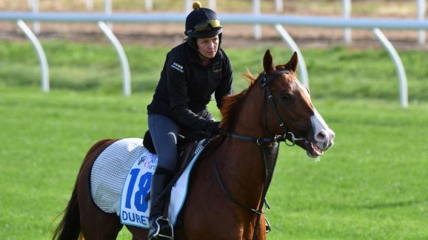 Duretto during a Werribee trackwork session at Werribee Racecourse