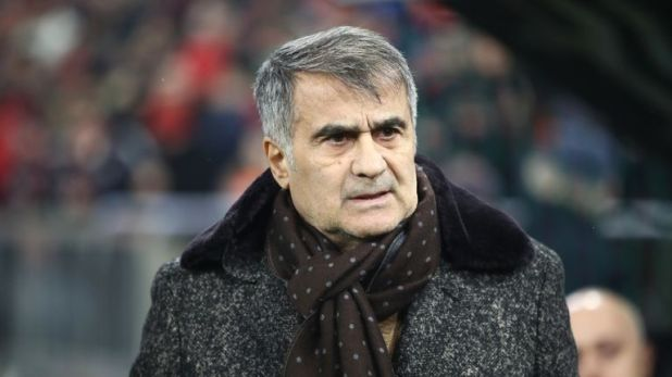 Senol Gunes is set to take over as Turkey head coach at the end of the season