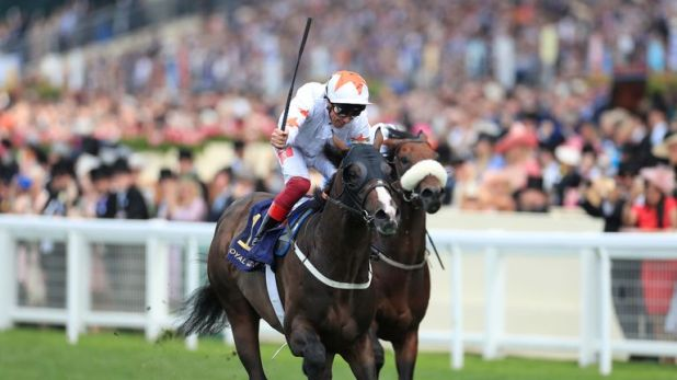 Advertise and Frankie Dettori win the Commonwealth Cup