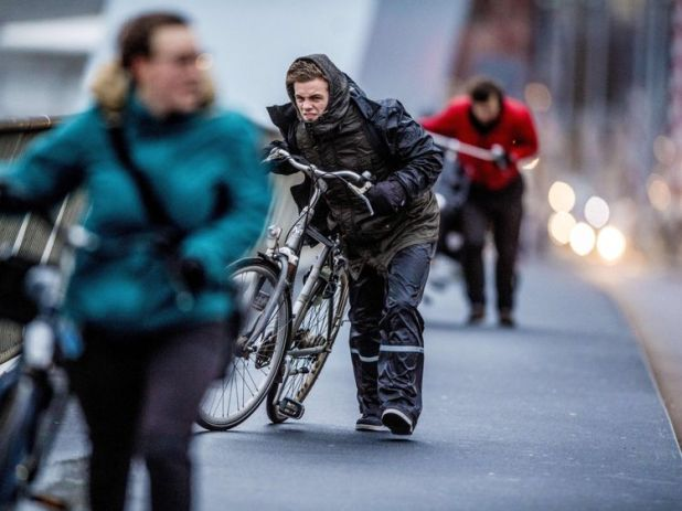 Gale-force winds hit Rotterdam