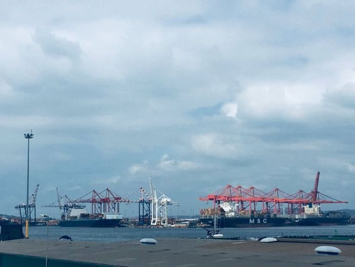 Durban Harbour with the MSC Susanna in the background which was carrying the containers South Africa's ecological 'nightmare' after plastic pellets spill South Africa's ecological 'nightmare' after plastic pellets spill skynews durban africa sparks 4239311