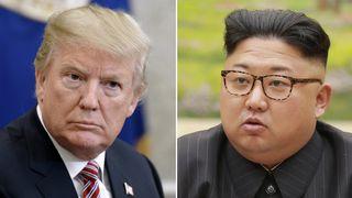 Donald Trump and Kim Jong Un Trump questions whether Kim wants North Korea summit Trump questions whether Kim wants North Korea summit skynews donald trump kim jong un 4250776