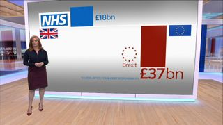 Will the cost of Brexit negate the extra funding for the NHS? Brexit is a sign of our 'failure', EU official Guy Verhofstadt admits Brexit is a sign of our 'failure', EU official Guy Verhofstadt admits skynews nhs gfx 4339127