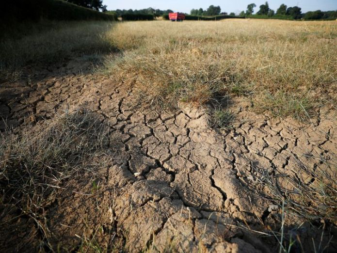 Cracks in a farmer's field near Altringham in Cheshire  Water companies must 'raise the bar' on tackling leaks skynews heatwave farmers field 4374502