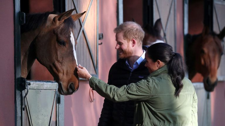 Harry and Meghan spent time with several horses at the centre