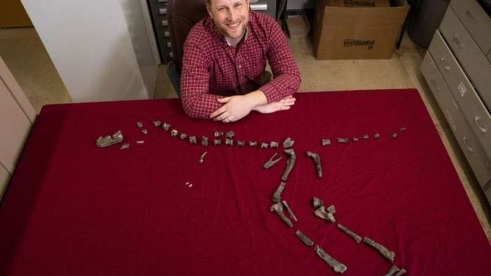 Sterling Nesbitt and fossil remains of Suskityrannus hazelae, which he found at age 16 in 1998. Credit: Virginia Tech