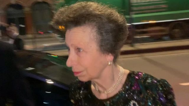 Princess Anne has refused to answer questions regarding her brother the Duke of York.
