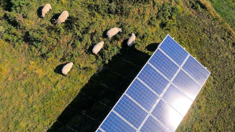 Tesco wants to make greater use of solar power. Pic: Tesco