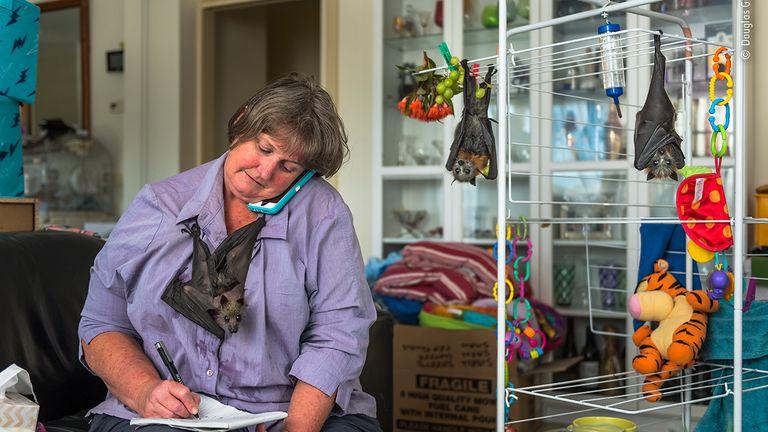 Fledermausfrau von Douglas Gimesy, Australien