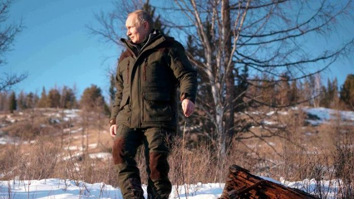 Russian President Vladimir Putin walks through a taiga forest in the Siberian region of Russia in Russia.  Pic: AP