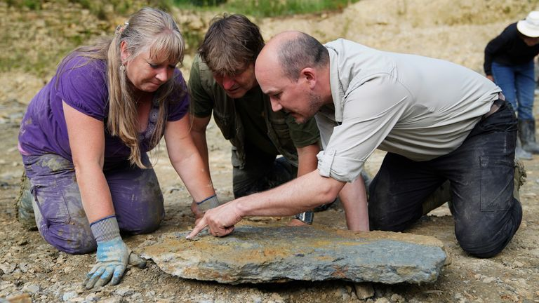 Neville (left) and Sally Hollingworth accompany Dr. Tim Ewin of the Natural History Museum as they inspect a slab during an excavation in a quarry in the northern Cotswolds where preserved echinoderms, sea lilies and echinoids from the Middle Jurassic period were found after the site was discovered by them. Picture date: Thursday July 1, 2021.