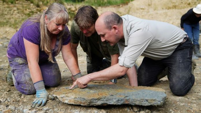 Neville (left) and Sally Hollingworth join Dr Tim Ewin from the Natural History Museum, as they inspect a slab during a dig in a quarry in the north Cotswolds, where preserved echinoderms, sea lilies and echinoids, dating back to middle Jurassic period, have been found after the site was discovered by them. Picture date: Thursday July 1, 2021.
