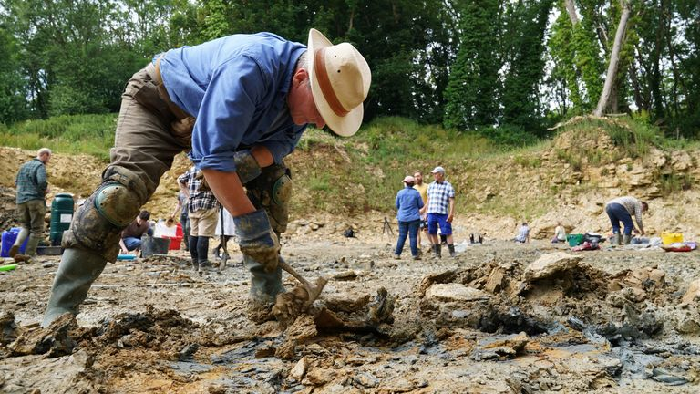 A paleontologist from the Natural History Museum is digging a quarry in the northern Cotswolds to find preserved echinoderms, sea lilies and echinoids from the Mid Jurassic after Neville and Sally Hollingworth discovered the site. Picture date: Thursday July 1, 2021.