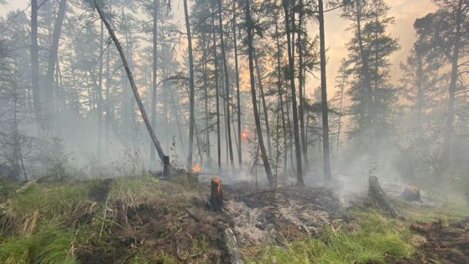 'Reverse fires' are set to try to control the flames