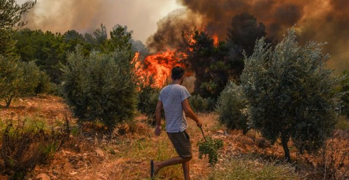 Turkey wildfires: Tourists evacuated by boat from holiday resort of Bodrum | World News