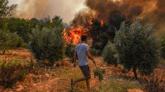 Wildfire in the Kacarlar village near the Mediterranean coastal town of Manavgat, Antalya, Turkey, on Saturday 31 July. Pic: AP