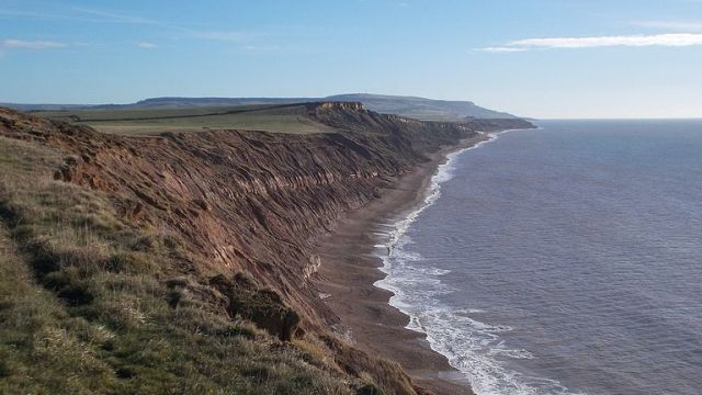 The fossils were discovered on Brighstone Bay, Isle of Wight. Pic: Mypix/CC4