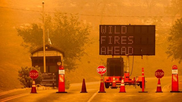 Cones block the entrance to Sequoia National Park as the KNP Complex Fire burns nearby on Wednesday. Pic: AP