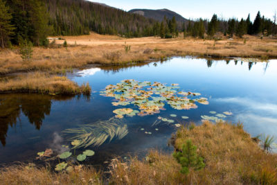 The upper course of the Colorado River lies in a swampy meadow just inside the northern boundary of Rocky Mountain National Park at La Poudre Pass, Colorado.