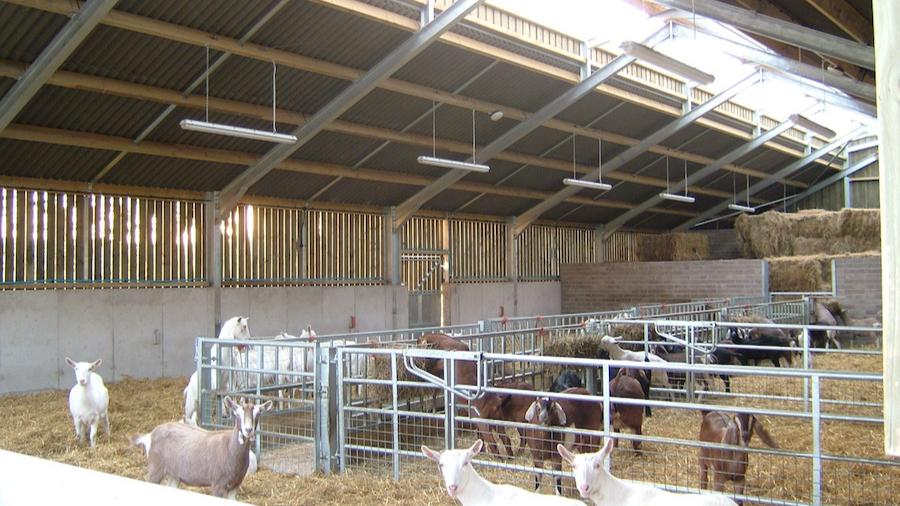 161_HILLFARM_150-barn-internal