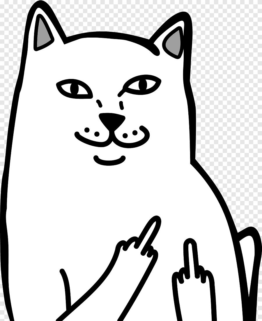 Lord Nermal Illustration Cat Middle Finger The Finger T Shirt