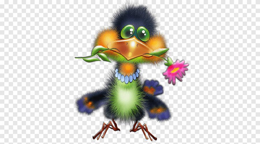 Wednesday Good Morning Quotation Good Morning Meme Bird Png