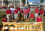 Gator Bowl Parade