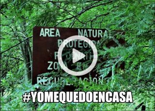 """VIDEO DEL ÁREA NATURAL PROTEGIDA """"FLORINDO DONATI"""", NUESTRO LUGAR EN EL MUNDO"""