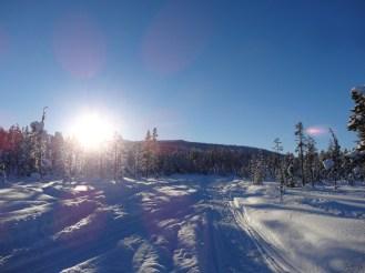 Snowmobile tracks
