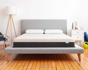 bear mattress for athletes