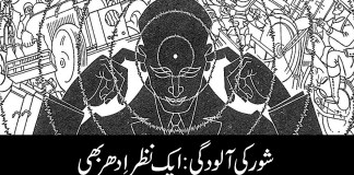 Social and Political Issues | Eqbal Ahmad Centre for Public