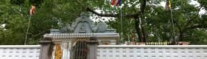 Anuradhapura - Bodhi Tree