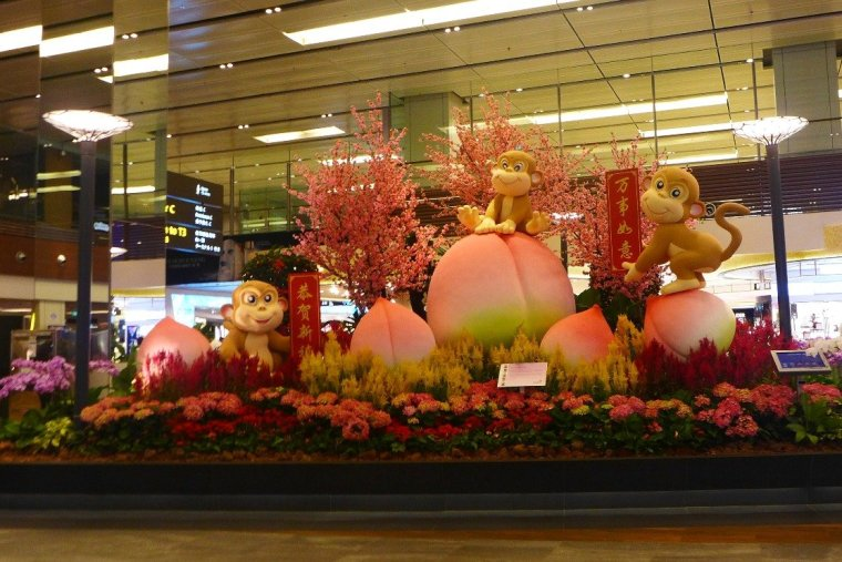 What to do in Singapore; Changi Airport Layover; Singapore Changi Airport Terminal 1