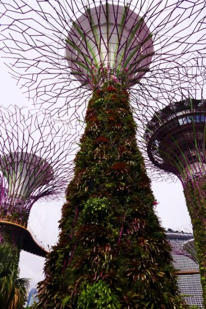 D.I.Y. Singapore Modern Buildings; D.I.Y. Singapore Itinerary; D.I.Y. Singapore Architecture Tour