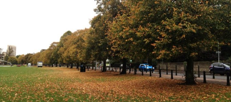 UK: Food, Goods and Autumn Leaves