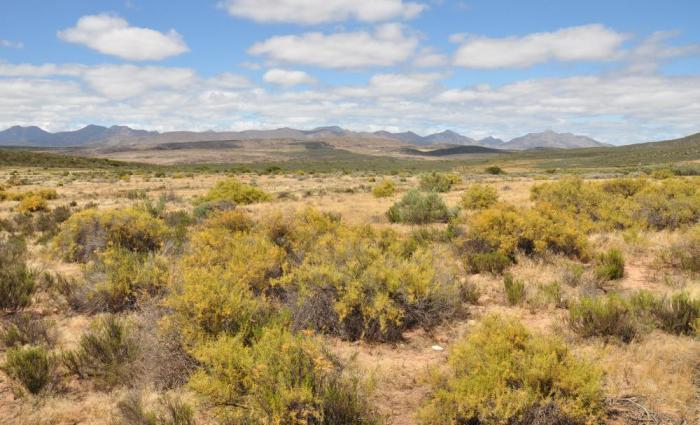 Gamkaberg Nature Reserve: Big Sky, Klein Karoo Country